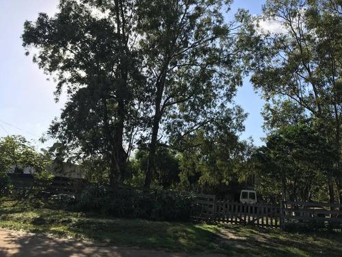 suc. el pinar - oportunidad casa en 1600 m2 sobre ruta