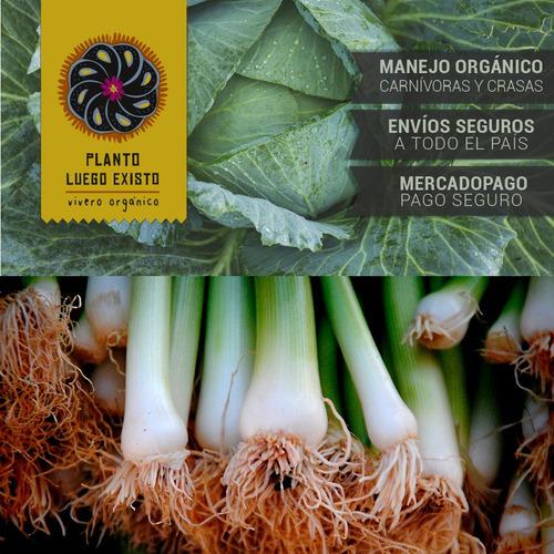 tarantula de  advanced nutrients1000 ml