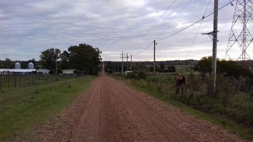 termas daymán quinta / terreno 7,9 hec rural / turistico