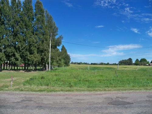terreno 10.000 m2 residencial productivo en zona de chacras