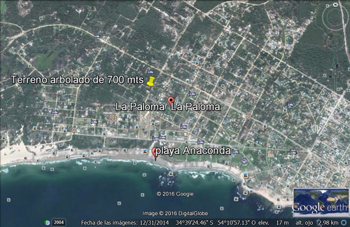 terreno  arbolado  700 mts - playa anaconda  400 mt del mar