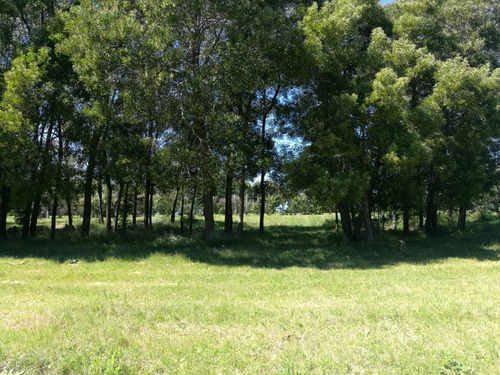 terreno barato financiable en barrio privado canelones - a12
