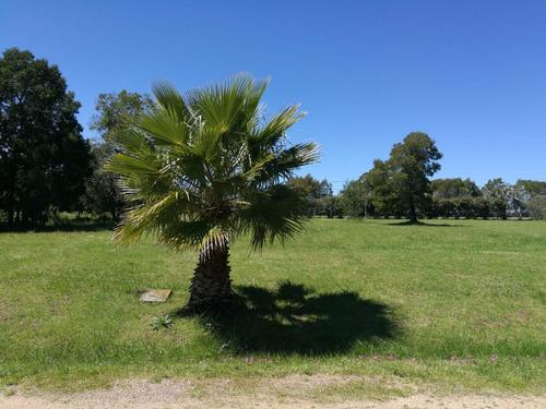 terreno barato financiable en barrio privado canelones - a13