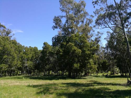 terreno barato financiable en barrio privado canelones - a6