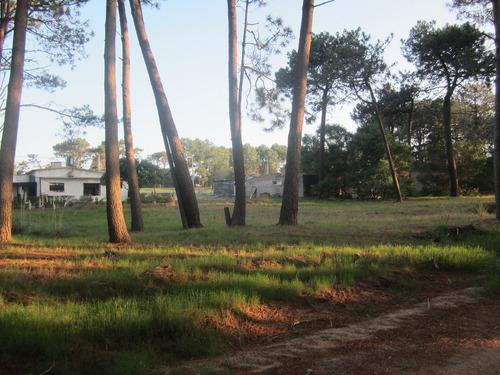terreno  cuchilla alta lado  norte de ruta (ref.  y 279 )