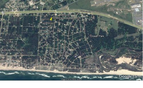terreno de 1002 m2 en ocean park, 8 cuadras rambla!