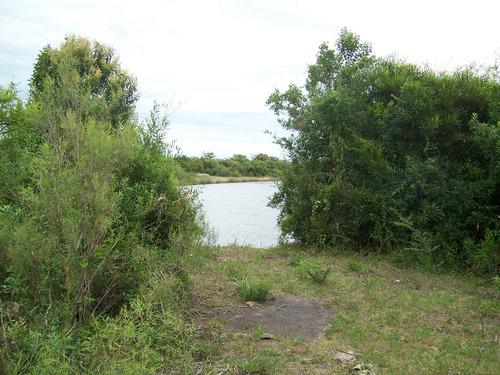 terreno de 117.214 m2 sobre arroyo navegable en carmelo