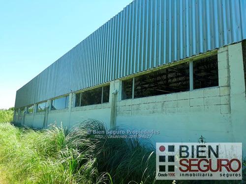 terreno de 16715m2c/local industrial en alquiler en peñarol