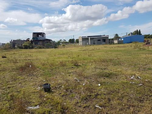 terreno de 300 m2 en los algodones a una cuadra parada omnib
