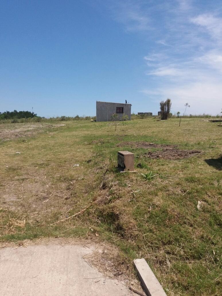 terreno de 5000m2 con casita
