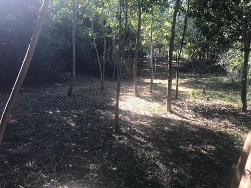 terreno en balneario los pinos