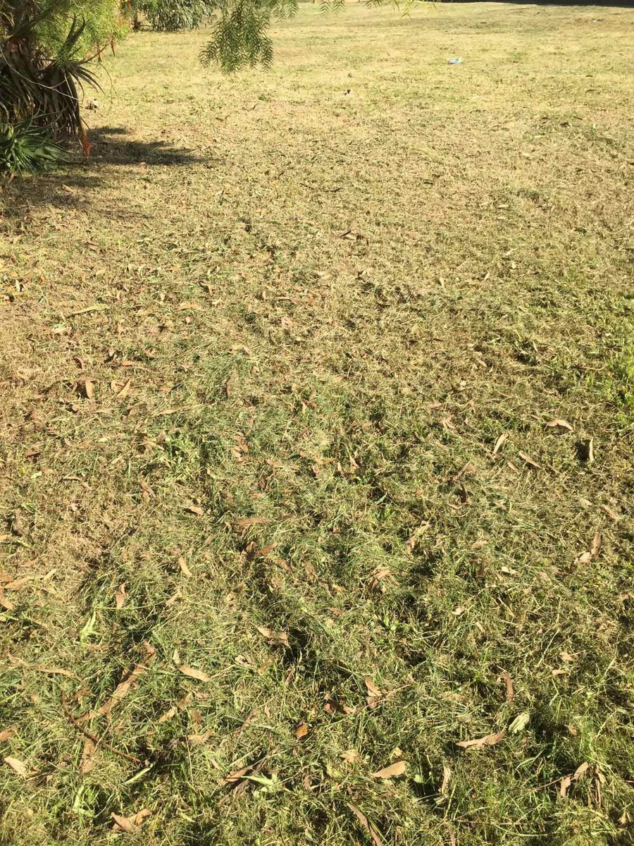 terreno en city golf.atlantida nortelimpio y nivelado