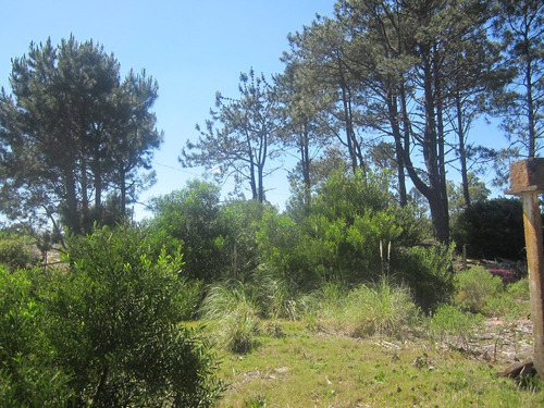 terreno en jaureguiberry sur (ref. y 116 )