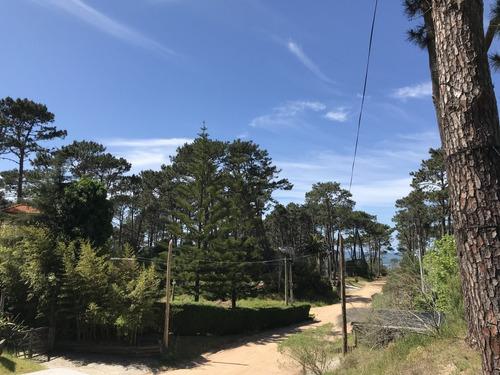 terreno en montoya cerca de la playa