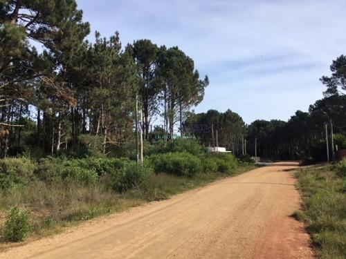 terreno en parque burnett - ref: 5601