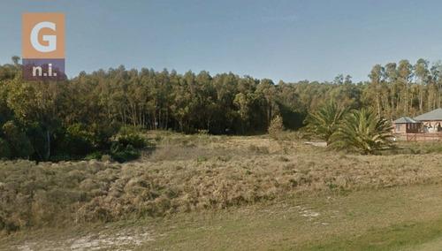 terreno en piriápolis (bella vista)