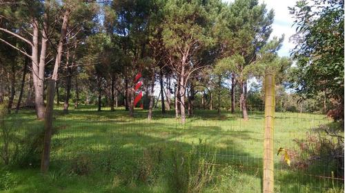 terreno en rincón del indio 2 hectáreas - ref: 35708