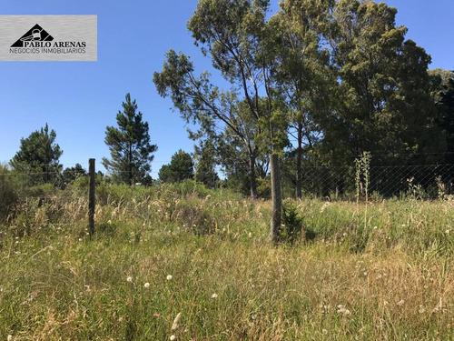 terreno en venta - balneario los pinos - colonia #253 local