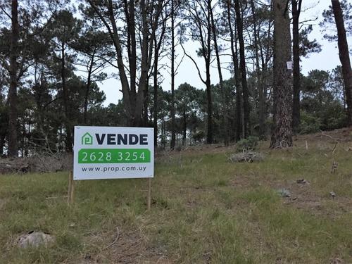 terreno en venta en chihuahua - lote 2