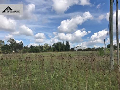 terreno en venta - nueva helvecia - colonia - 1300 m2 #527