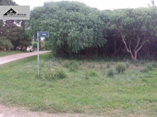 terreno en venta - playa los pinos - colonia #548