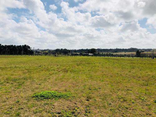terreno financiado canelones - colinas de carrasco - lote a7