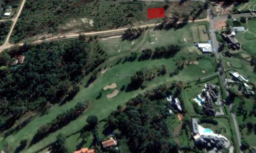 terreno - golf