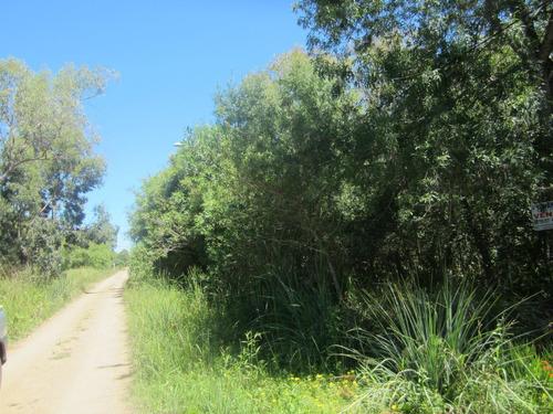 terreno  jaureguiberry  lado sur (ref. y 105)