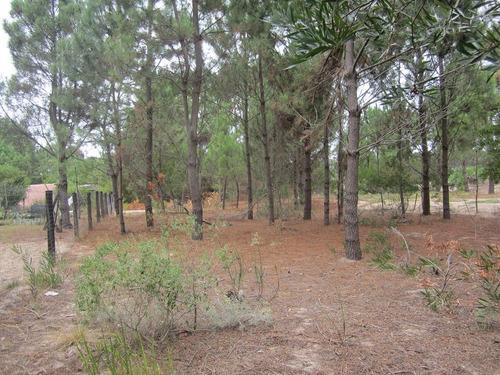 terreno jaureguiberry norte (ref y 156)