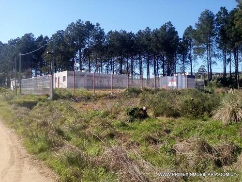 terreno listo para construir, totalmente cerrado. - financia