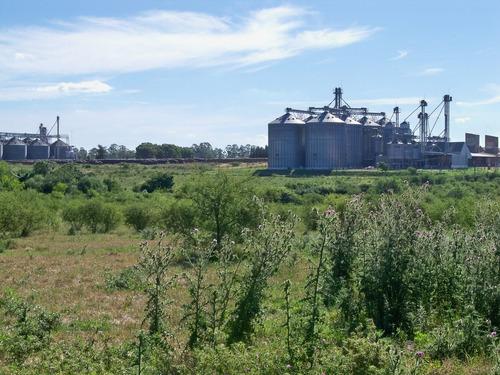terreno  logístico industrial en nueva palmira