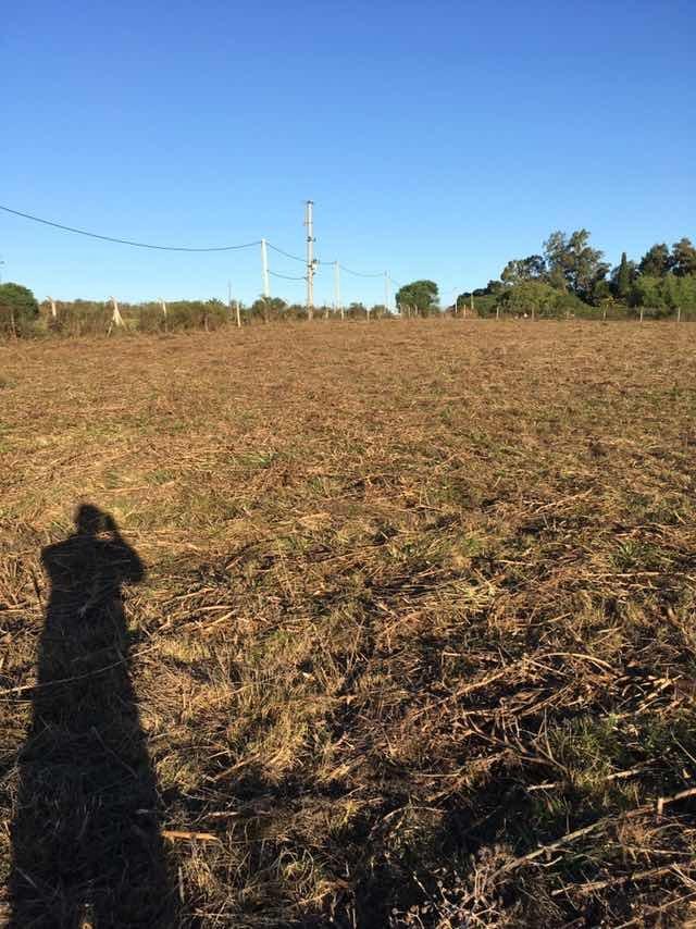 terreno logístico - mercedes - soriano - r.2 . us$ 12 el  m