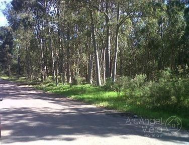 terreno - parque burnett