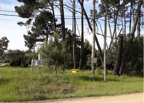 terreno sobre avenida próximo al bus y centro