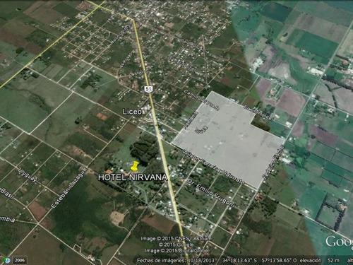 terrenos en venta - nueva helvecia - colonia - #70