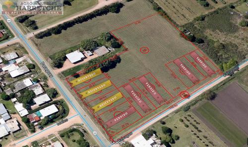 terrenos financiados hasta 60 cuotas inmobiliaria harretche