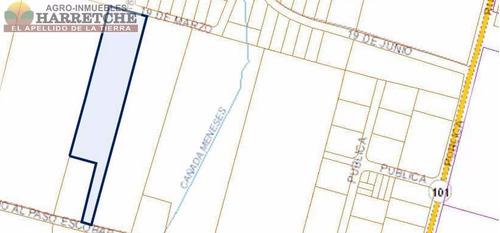 terrenos logisticos e industriales a pasitos de ruta 101