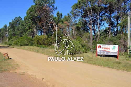 terrenos-venta-punta-colorada-te407