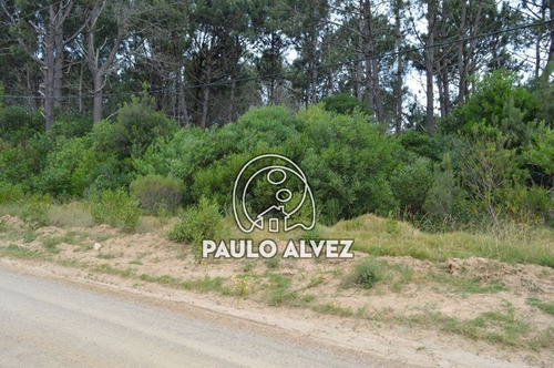 terrenos-venta-punta-colorada-te617