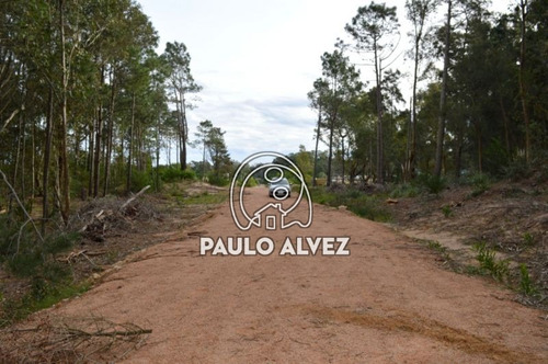 terrenos-venta-punta-colorada-te892