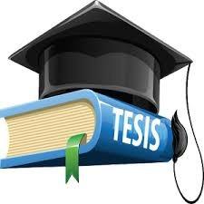 tesis, tesinas,trabajos de grado.  asistencia académica
