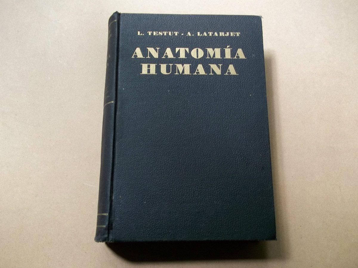 tratado de anatomia humana testut
