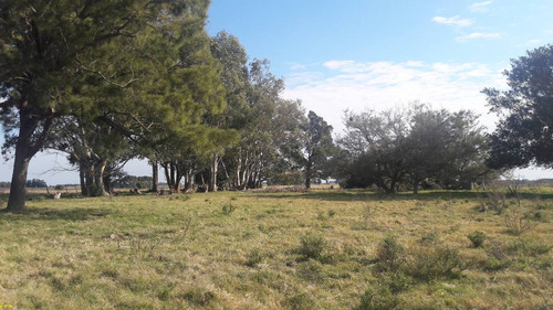 unico campo en venta con excelente costa a río