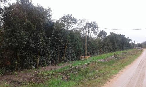 vendo 6 terrenos de 1050 mts c/u o  6300 mts al fte en pando