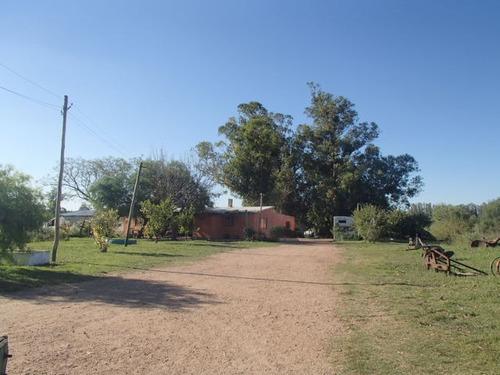 vendo /alquilo chacra 28 has inmobiliaria harretche