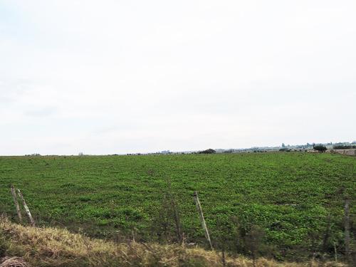 vendo campo 109 hectáreas san antonio inmobiliaria harretche