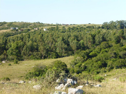 vendo campo 66 has pegado a villa serrana, minas-lavalleja