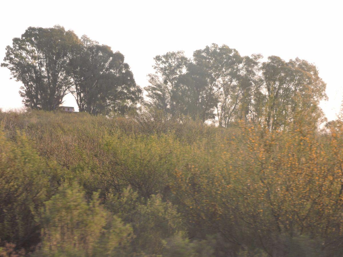 vendo campo de 64 has los cerrillos inmobiliaria harretche
