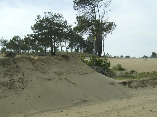 vendo excelente terreno - playa de la viuda