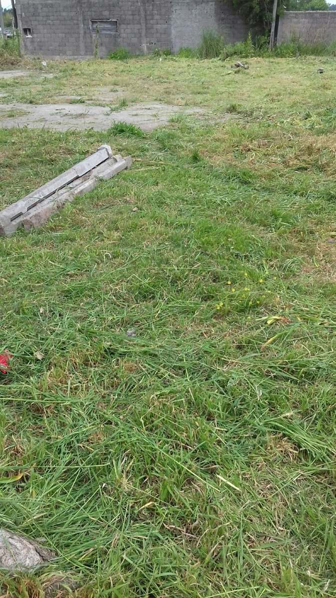 vendo terreno a 4 cuadras de av roosevelt en pando o permuto